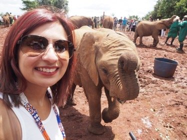 The David Sheldrick Wildlife Trust – Volunteering opportunities