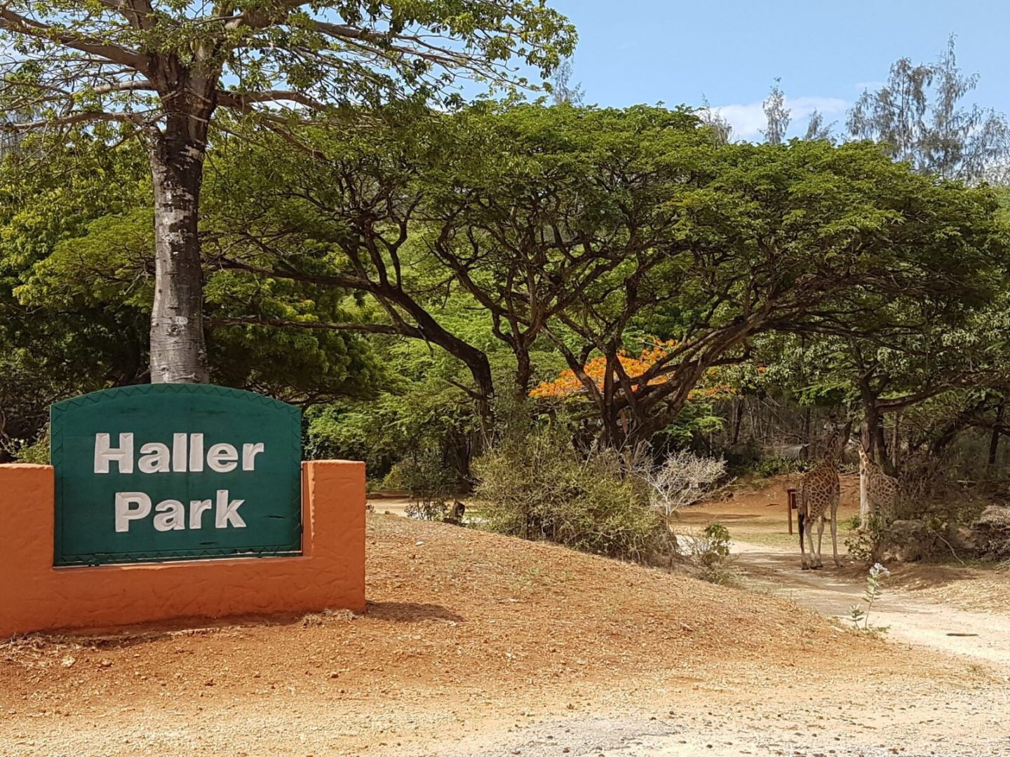 Haller Park – a beautiful ecological sanctuary in Mombasa