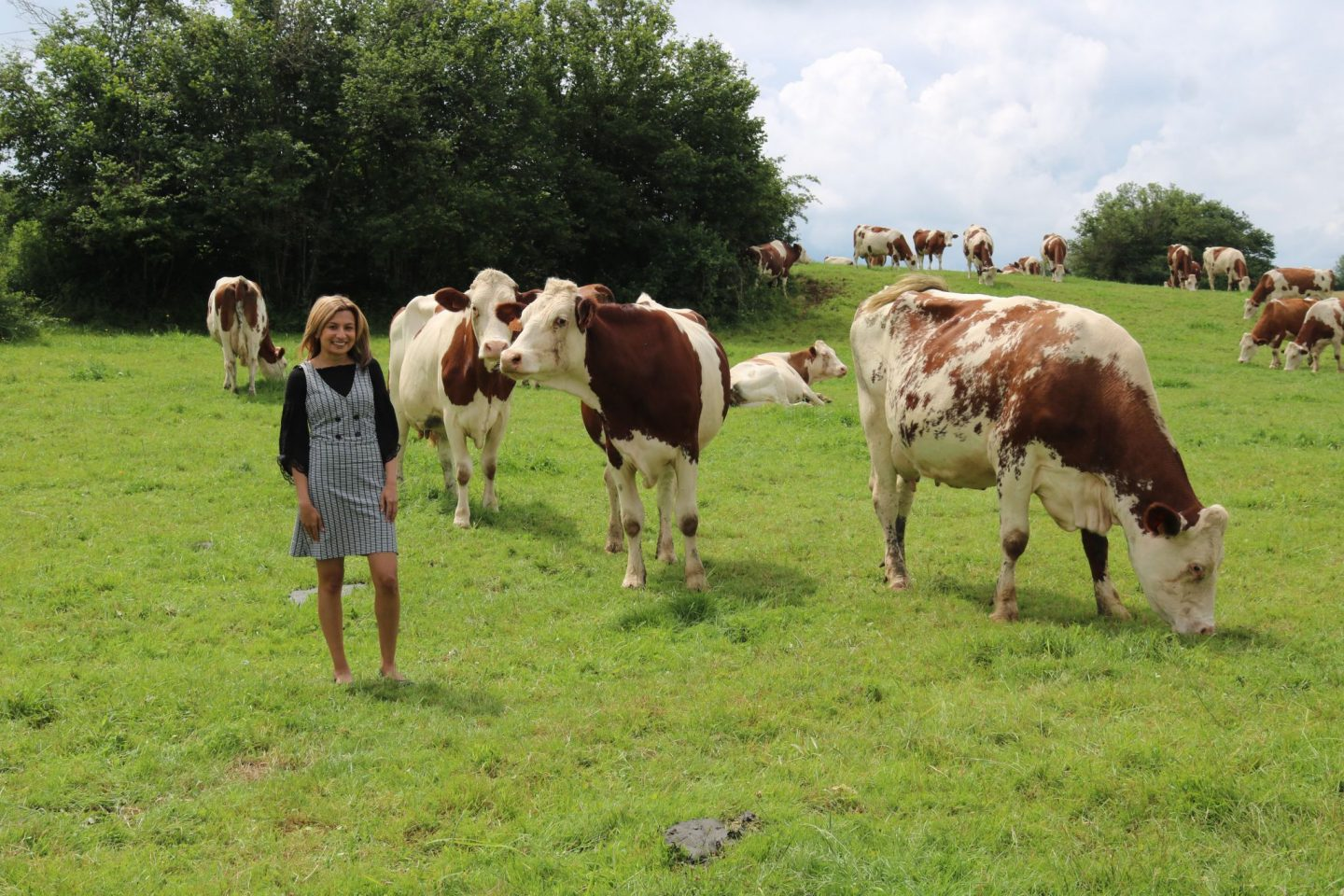 A trip to the Jura Massif region of France to learn all about Comté Cheese
