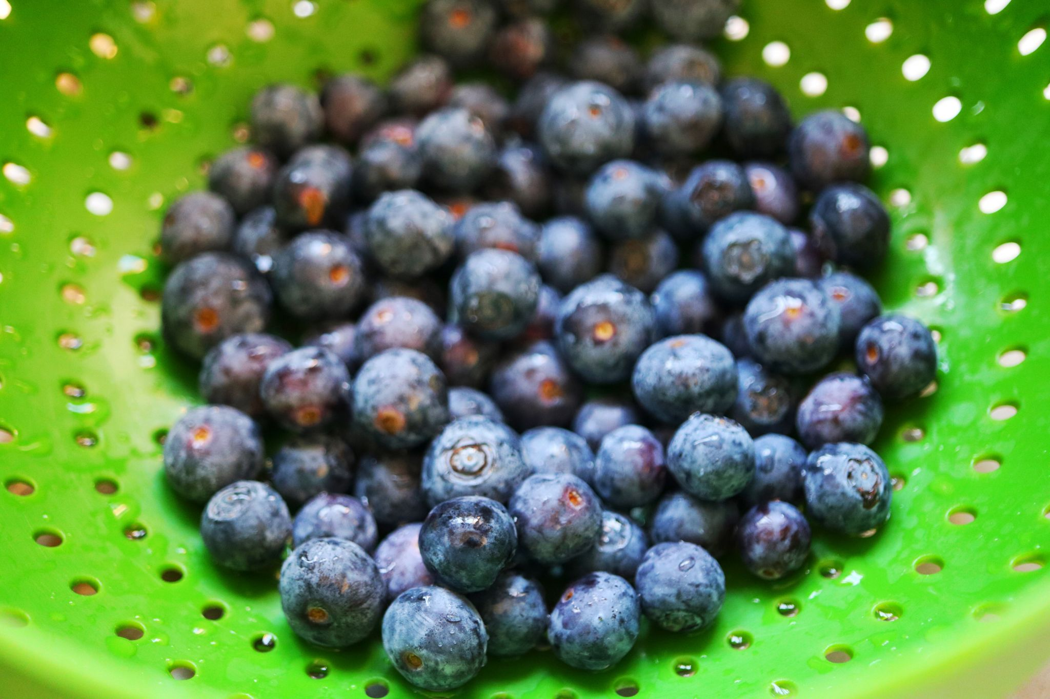 Argentinean blueberries